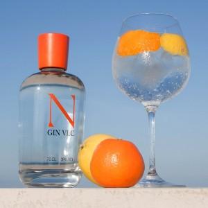 Gin Nodus