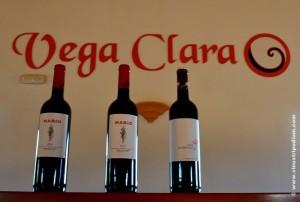 Bodega Vega Clara gamma