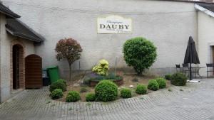 Champagne Dauby